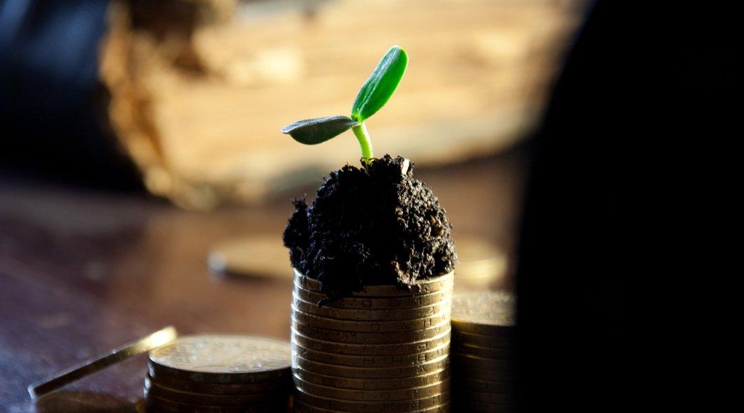 Деньги, рост